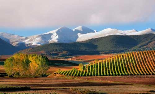 Tecnovino campana de promocion turistica de La Rioja