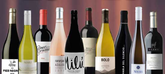 Tecnovino diez vinos Bodegas Arane