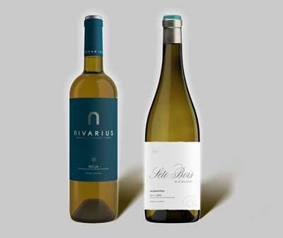 Tecnovino novedades sobre vino Gourmets 2015 Palacios Vinoteca
