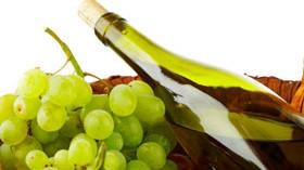 Autorizan plantar hasta 400 hectáreas de variedades blancas en Rioja Alavesa