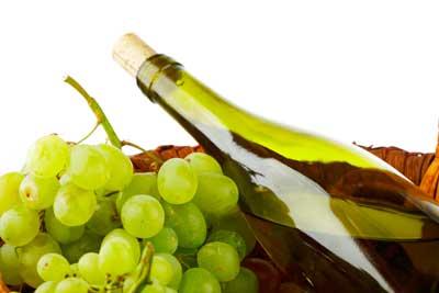 Tecnovino variedades blancas Rioja Alavesa