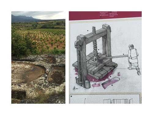 Tecnovino Ardo Koloreak Rioja Alavesa Abra 2