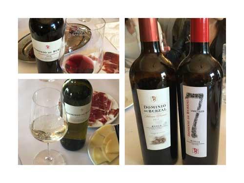 Tecnovino Ardo Koloreak Rioja Alavesa Abra 4