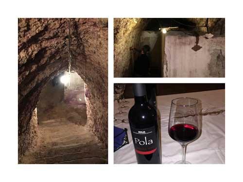 Tecnovino Ardo Koloreak Rioja Alavesa Abra 5