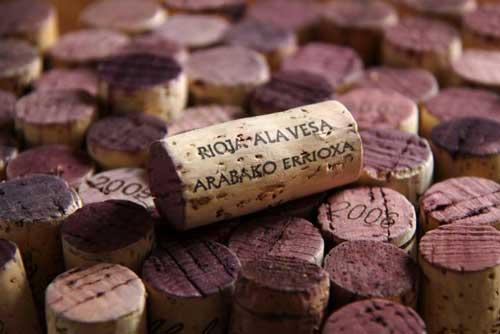 Tecnovino Rioja Alavesa Ardo Koloreak Basque Wine 4