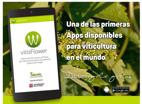 Tecnovino flores del vinedo app Televitis 2