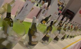 Tecnovino galeria del vino Fenavin