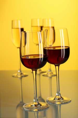 Tecnovino marcas del vino Juve y Camps Primeras Marcas