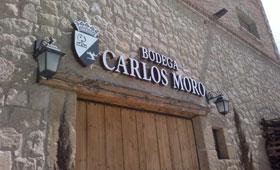 Tecnovino Bodega Carlos Moro Grupo Matarromera