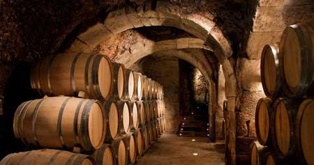 Tecnovino Rioja Alavesa Ardo Koloreak Wine Professional 1