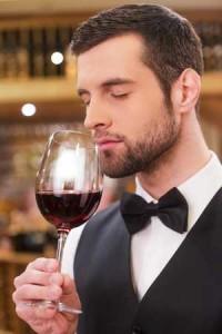 Tecnovino Rioja Alavesa Ardo Koloreak Wine Professional 2
