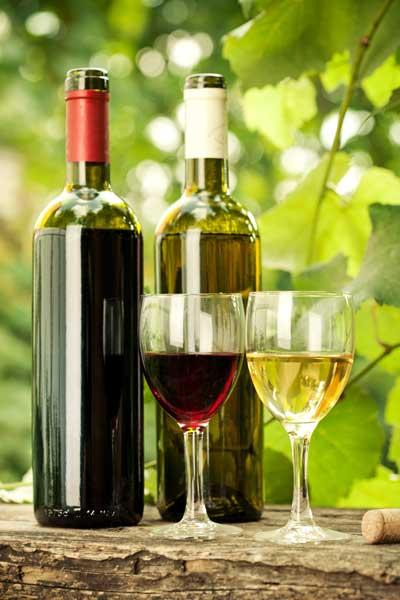 Tecnovino desechos de la uva nuevos productos Ainia 3