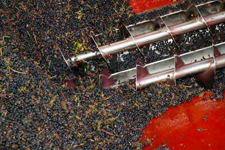 Tecnovino seguridad laboral sector vitivinicola Grupo Geseme 1