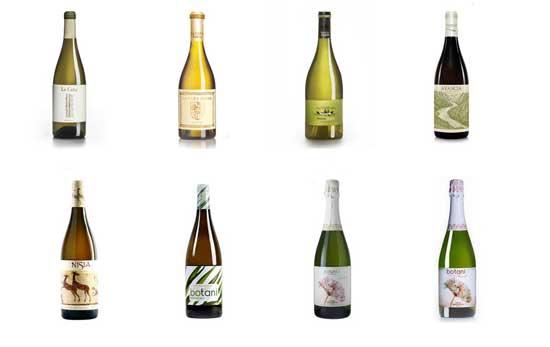 Tecnovino vino blanco Grupo Jorge Ordonez 2