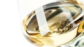 Aumenta la demanda y cultura del vino blanco en España según Grupo Jorge Ordóñez