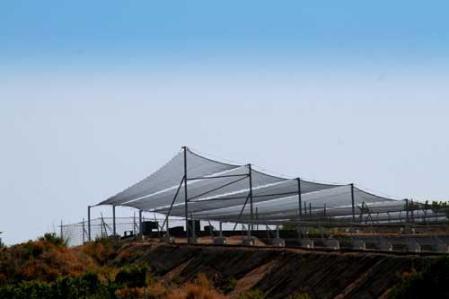 Tecnovino bodega de vinos naturales de Alta Alella 3
