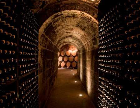 Tecnovino enoturismo Rioja Alavesa Ardo Koloreak 2