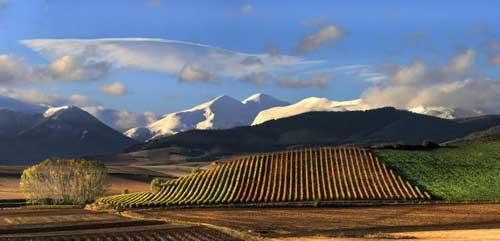 Tecnovino paisaje cultural del vino y el vinedo de la rioja