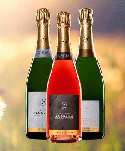 Tecnovino Champagne Sanger Espana