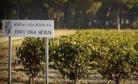 Tecnovino Tempos Vega Sicilia Iturriaga