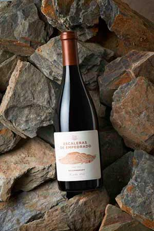 Tecnovino vino chileno Escaleras de Empedrado Torres 1