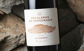 Tecnovino vino chileno Escaleras de Empedrado Torres