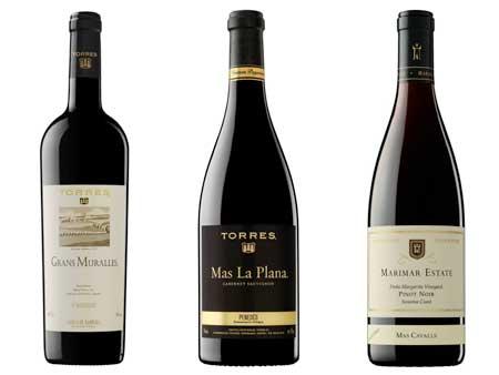 Tecnovino vinos de Torres hermanos Roca 1