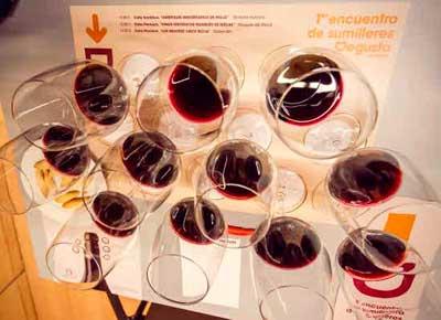 Tecnovino Degusta La Rioja congreso sumilleres 2