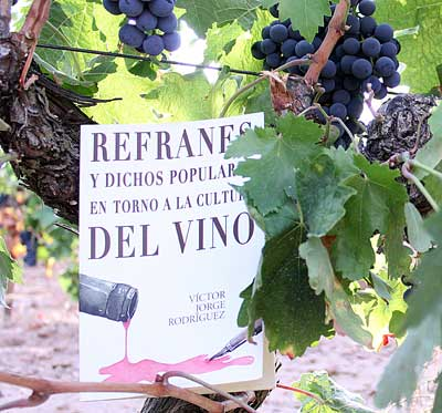 Tecnovino libro refranes cultura del vino 1