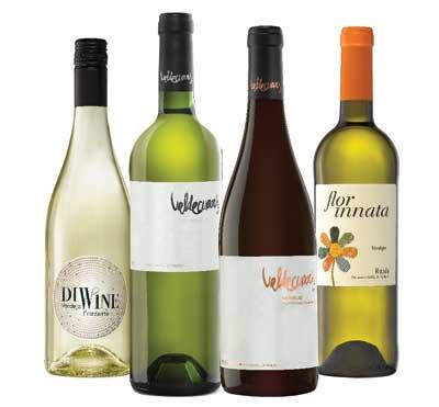 Tecnovino Bodegas Valdecuevas vendimia 2015 vinos