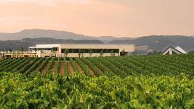 La nueva fuente de energía calórica de Cavas Vilarnau: la biomasa