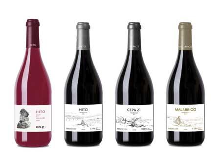 Tecnovino Cepa 21 nueva imagen vinos