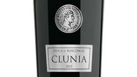 Finca El Rincón de Clunia, un crianza complejo y elegante