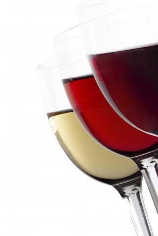 Tecnovino Intia Certificacion vino