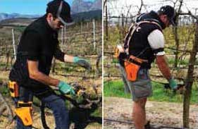 Tecnovino Palmares de Sitevi 2015 podadora viticultura