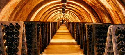 Tecnovino Rutas del Vino de Espana 1