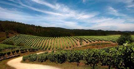 Tecnovino Rutas del Vino de Espana 2