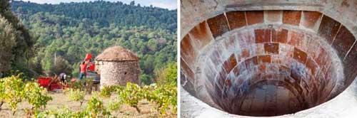 Tecnovino vino de tina Roqueta Origen 1