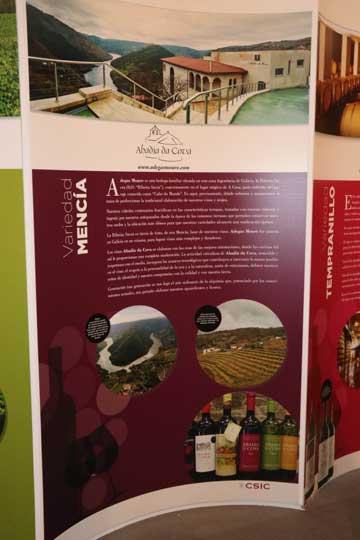 Tecnovino Abadia da Cova CSIC viticultura de precision 2