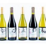 La cara solidaria del vino: Uvas de Vida recauda fondos para investigar el cáncer infantil