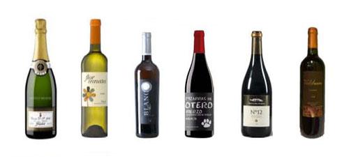 Tecnovino concurso vino Champions Wine ganadores