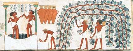 Tecnovino vino en el Antiguo Egipto Perelada