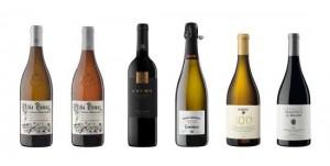 Tecnovino vinos exclusivos Alto Prestigio Codorniu Raventos 1