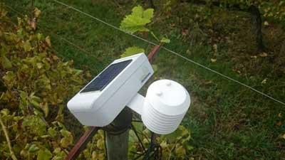 Tecnovino viticultura de precision Cultiva Decisiones 2