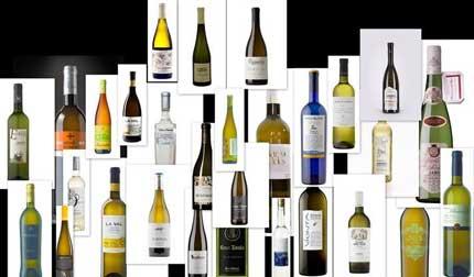 Tecnovino Albarinos al Mundo 2015 vinos