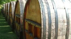 El Magrama estima una producción de vino de 39,957 millones de hectolitros