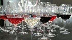 La Ruta del Vino Ribera del Duero sigue creciendo