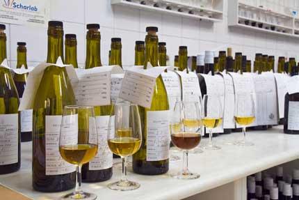 Tecnovino bag in box para vinos Delgado Zuleta