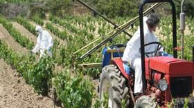 Una revisión gratuita para los equipos de aplicación de fitosanitarios en el viñedo