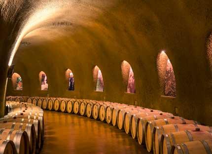 Tecnovino ozono vino Asp Asepsia 4